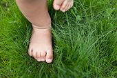stock photo of fingers legs  - Small baby feet on the green grass - JPG