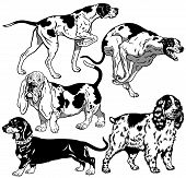 Black White Set With Hunting Dogs