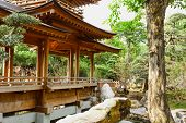 pic of taoism  - Red temple and Red maple trees - JPG