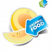 Icon melon with the arrow by organic food. Vector illustration.
