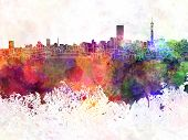 Johannesburg Skyline In Watercolor Background