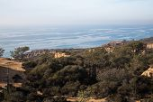 Landscape View of Torrey Pines