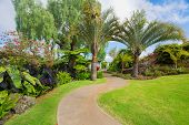 Beautiful garden path to luxury estate home