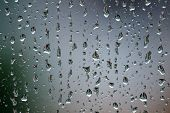 Rain drops on glass