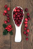 Christmas cranberry fruit in a porcelain scoop with holly over oak background.
