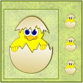 Cute Easter Chick In Eggshell