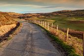 Isle Of Mull, Country Road At Sunset