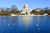 The Capitol in Winter - Washington D.C. United States
