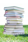 Book On Lawn