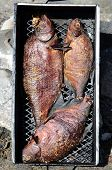 Three Bream Smoked In A Smokehouse
