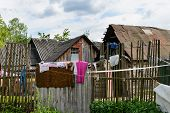 stock photo of gypsy  - Life in a gypsy village in Ukraine - JPG
