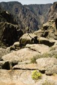 Canyon de Gunnison