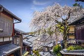 Kyoto, Japan at the Higashiyama district in the springtime.