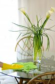 Cleaning service flowers on table