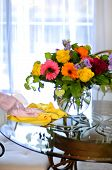 picture of spring-cleaning  - Cleaning house flowers on table woman clean dust - JPG
