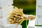 Bouquet With Spikelets Of Wheat Close Up
