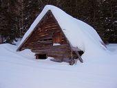 Snowed In Cabin