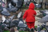 Child surrounded by pigeons