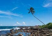 Tropical Rocky Beach