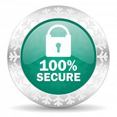 secure green icon, christmas button