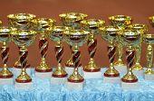 Winning Cups