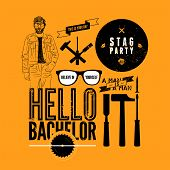 Set of grunge design element for stag party. Vector illustration