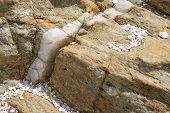 Calcite Vein In Rock