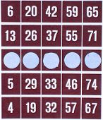 Red Bingo Card Isolated