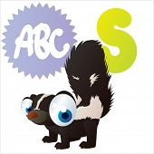 S is for vector cute cartoon isolated Skunk