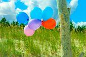 Balloon Chain On Sand Dune Beach