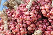 stock photo of red shallot  - Shallot - asia red onion in the market ** Note: Soft Focus at 100%, best at smaller sizes - JPG