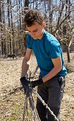 picture of spring-cleaning  - Teenager boy spring cleaning the orchard gathering cut branches to throw them away