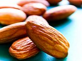 stock photo of seed bearing  - Almond trees become productive and begin bearing fruit after five years - JPG