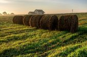 pic of farm-house  - Straw bales drying on a green grass and farm house during the sunrise in summer season Poland - JPG