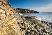 foto of shoreline  - The geology of the cliffs and Whin Sill at Cullernose Point are clearly seen along the rocky shoreline in Northumberland - JPG