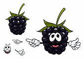 image of pie-in-face  - Ripe succulent blackberry fruit cartoon character with black shining drupelets - JPG