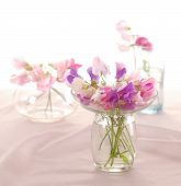 stock photo of sweetpea  - Bouquet of beautiful sweet peas flowers - JPG