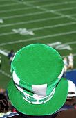 foto of notre dame  - picture of notre dame fan at football game - JPG