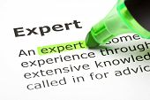 picture of guru  - Macro shot of the word Expert highlighted in green - JPG