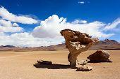 Stone Tree, Arbol De Piedra, Bolivia