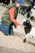 Boy hugging a goat