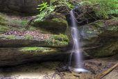 Reckworth Falls