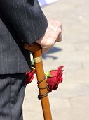 Hand with walking stick