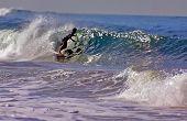 Blue Shadow Surfer