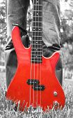 Red Bass Guitar On The Grass