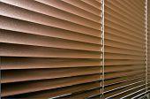 Aluminium Colorized Blinds On Plastik Window