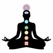 Chakra, Cakra, Tantric, Hinduism, Buddhism, Vajrayana, Meditation, Yoga poster