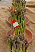 Asparagus Bunch On Sale From An Organic Market