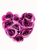 picture of purple rose  - Heart shape made of purple roses on white - JPG