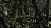 jungle scene with kind of bridge tree